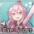 ExpBoost