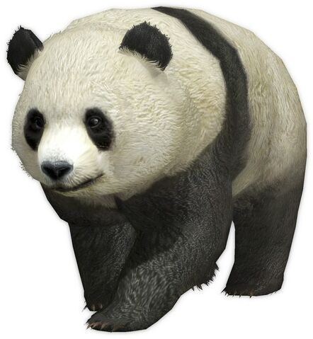File:Panda (DW7).jpg