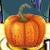 Pumpkin (HWL)