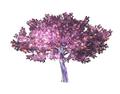 Ornamental Plant 7 (DWO)