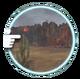 Desolate Gorge (FEW)