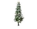 Ornamental Plant 3 (DWO)