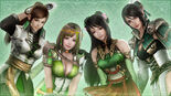 Female Wallpaper 3 (DW8 DLC)