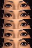 Female Eye Shadows (DW7E)