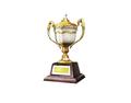 Ornamental Trophy 1 (DWO)