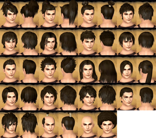 File:Male Hairstyles (TKD).png