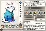 Ladyhayakawa-nobunyagayabou