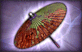File:3-Star Weapon - Autumn Parasol.png