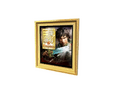 Picture Frame 16 (DWO)