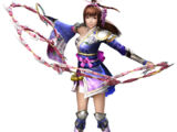 Samurai Warriors 4/DLC