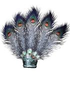 Male Head 35B (DWO)