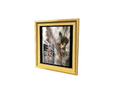 Picture Frame 10 (DWO)