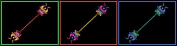 DW Strikeforce - Pugil Sticks 6