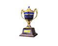 Ornamental Trophy 6 (DWO)