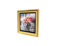 Picture Frame 18 (DWO)