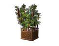 Indoor Plant 2 (DWO)