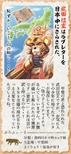 Shingen Takeda 13 (1MNA)