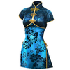 Xingcai Costume 1C (DWU)