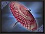 Dance Parasol (SW2)