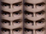 Male Eyebrows (BSN)