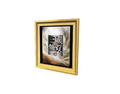 Picture Frame 9 (DWO)