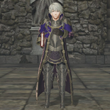 Male Robin Promotion Outfit (FEW)