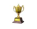 Ornamental Trophy 2 (DWO)