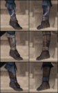 Bodyguard Leg 3 (DW5)