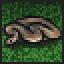 Python (UWG)