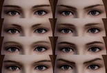 Female Eyebrows (BSN)