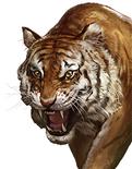 Tiger (ROTKLCC)