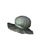 Male Head 1A (DWO)
