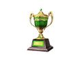Ornamental Trophy 8 (DWO)