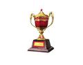Ornamental Trophy 4 (DWO)