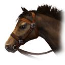 Horse (DWU)