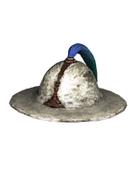 Male Head 3D (DWO)