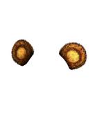 Male Head 152 (DWO)