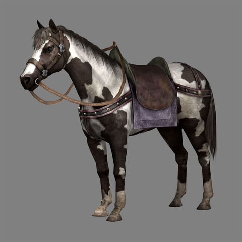 File:Black Bay Horse (DW8 DLC).jpg