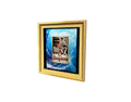 Picture Frame 13 (DWO)