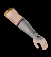 Male Arm Guards 1 (TKD)