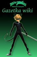 Gazetka4