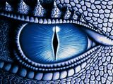 Oko Saphiry