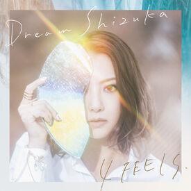 Dream Shizuka - 4 FEELS DVD cover