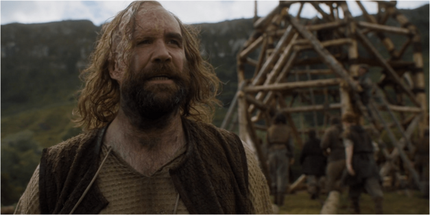 Game of Thrones Halloween costume idea the hound