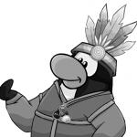 Pingui d4