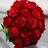 RoseGirlXS's avatar