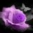 Punkdrummergirl's avatar
