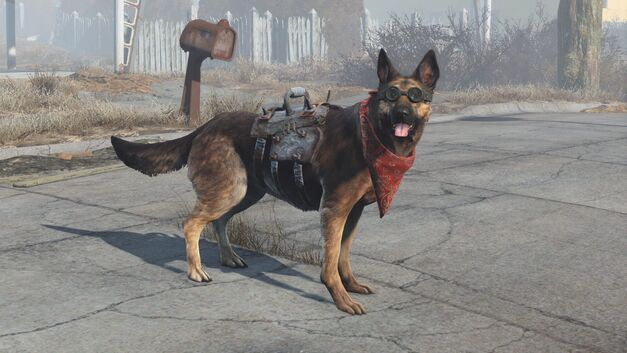 Fallout-Dogmeat-Equipped-Goggles-Armor
