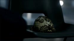 Tortoisemimicry