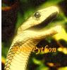 Pyro Python